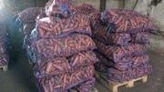 Морковь столовая оптом от 20 тонн в г.Кемерово