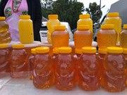 Горный алтайский мёд с собственной пасеки