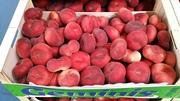 Персик плоский Paraguayo из Испании. Прямые поставки